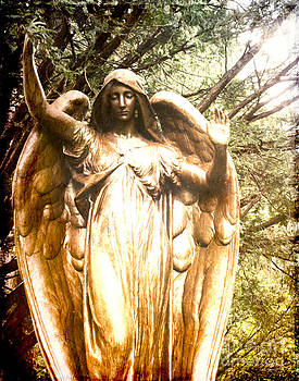 Sonja Quintero - Golden Angel