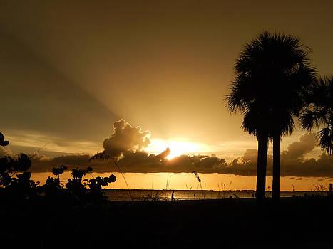 Florida Sunset 021 by Nola Hintzel