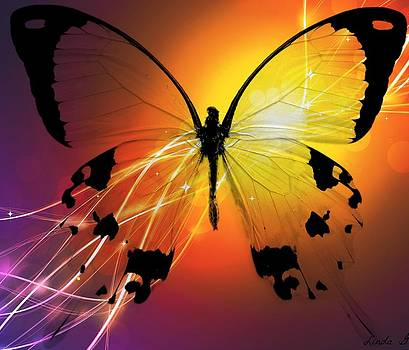 Golden Butterfly by Linda Gonzalez