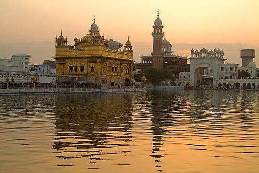 Devinder Sangha - Golden