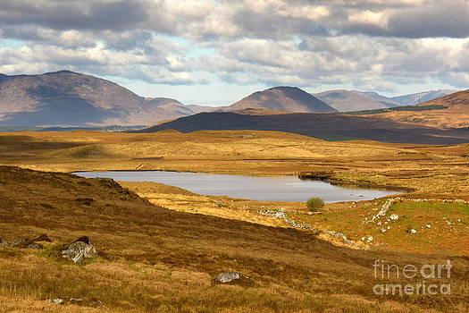 Golden dreams landscape by Annie  Japaud