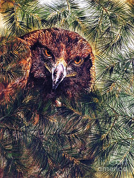 Golden Eagle by Donna Genovese