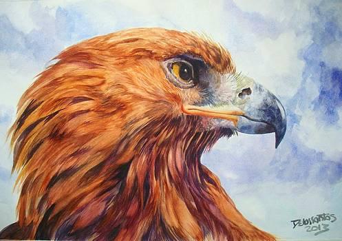Golden Eagle by Kristina Delossantos