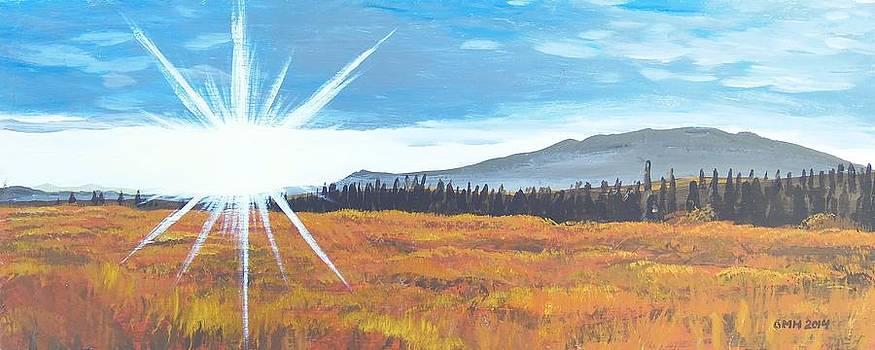 Golden Fields by Glenn Harden