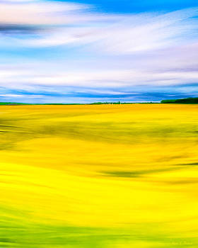 Mark Tisdale - Golden Fields Of England - My Canterbury Tale