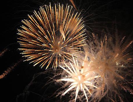 Golden Fireworks by Rowana Ray