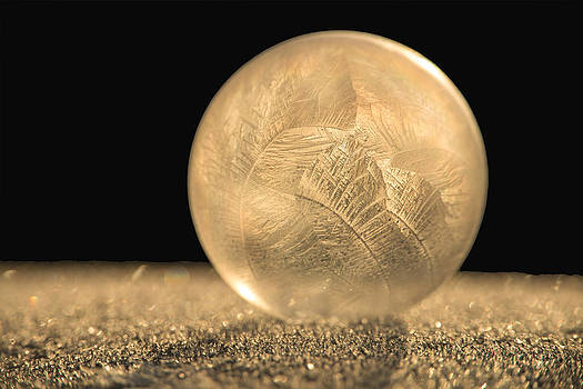 Golden Frozen Bubble by Kelvin Taylor