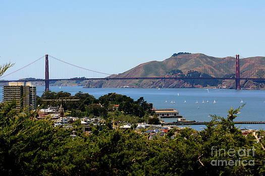 Danielle Groenen - Golden Gate Greenery