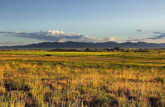 Golden Grass and Distant Mountains by Dana Moyer