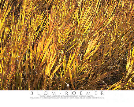 Golden Grass by Kimberly Blom-Roemer
