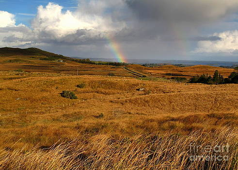 Golden grasses and bright rainbows by Annie  Japaud