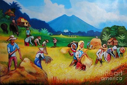 Golden Harvest by Ferdz Manaco
