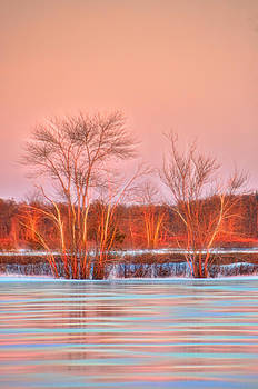 Golden Hour Frozen Reflection by Beth Sawickie