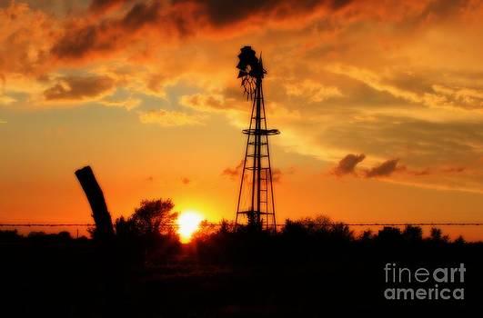 Golden Kansas Sunset with Windmill by Robert D  Brozek