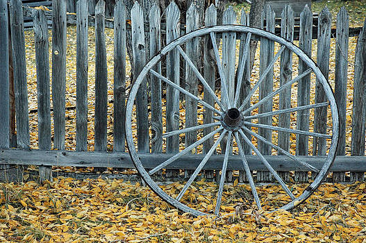 Golden Leaves and Old Wagon Wheel Against a Fence by Bruce Gourley