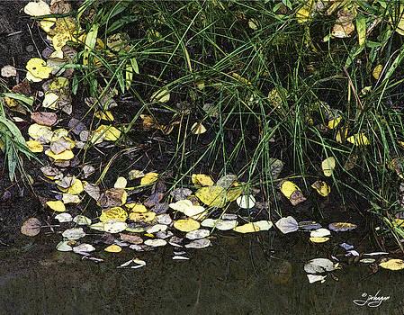 Jan Hagan - Golden Leaves