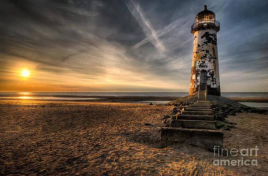 Adrian Evans - Golden Light