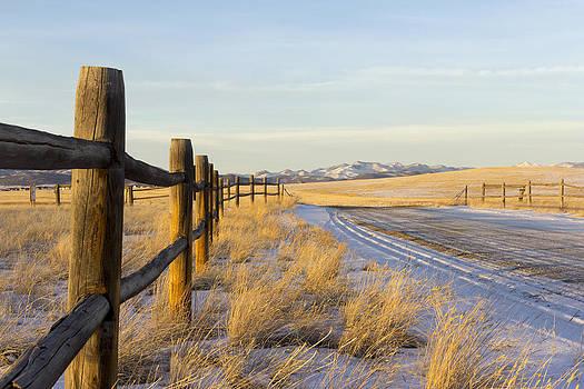 Golden light along the fence line by Dana Moyer