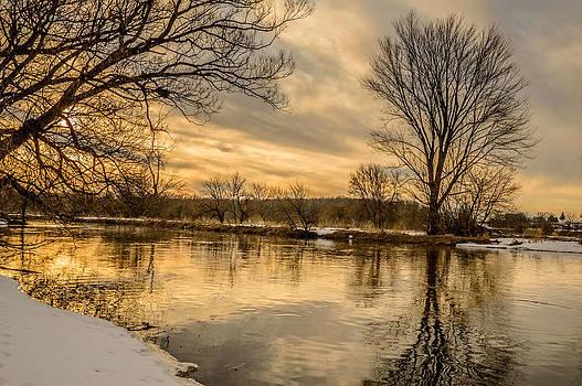 Golden Light by Garvin Hunter