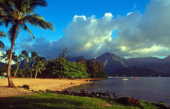 Kathy Yates - Golden Light on Hanalei