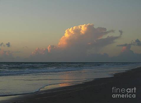 Golden Light on the Atlantic by Virginia Zuelsdorf