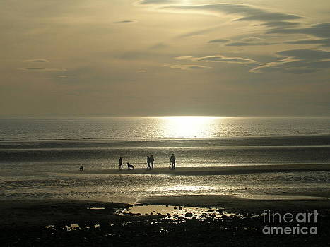 Golden Light on Walney Beach by Avis  Noelle