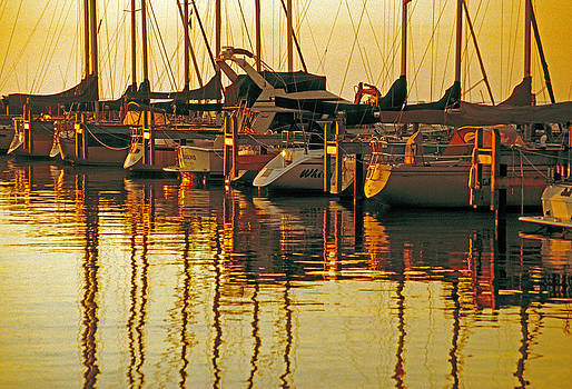 Dennis Cox - Golden marina