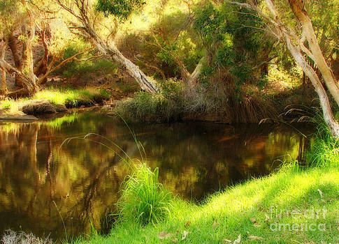 Michelle Wrighton - Golden Pond