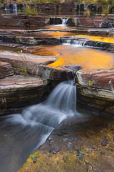 Golden Pools by Rick Drent