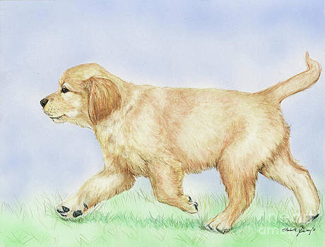 Golden Puppy by Charlotte Yealey