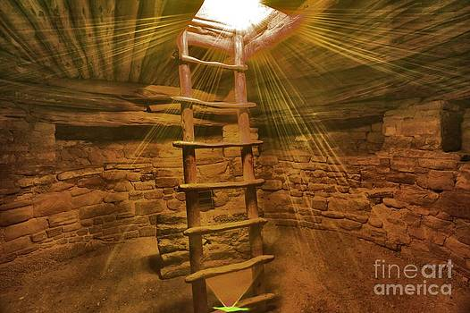 Adam Jewell - Golden Rays
