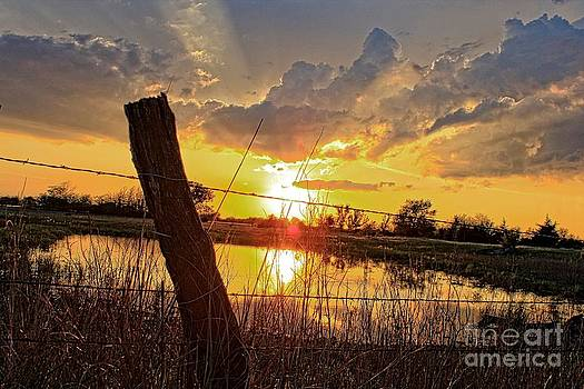 Golden Reflection with a Fence by Robert D  Brozek