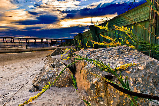 Golden Rod Sunset Wooden Fence Yellow Wildflowers Blue Green Art by Eszra Tanner