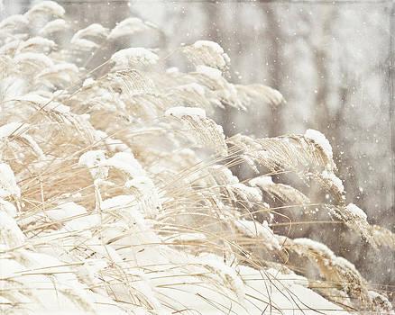 Lisa Russo - Golden Snowgrass Winter Photography