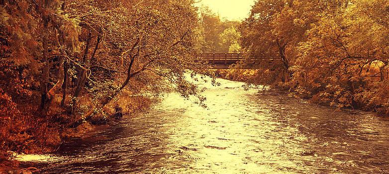 Jenny Rainbow - Golden Stream