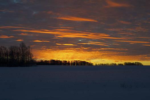 Elaine Mikkelstrup - Golden Sunrise