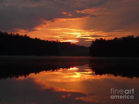 Golden Sunrise  by Glass Slipper