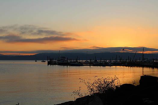 Golden Sunrise over the Hudson by Tammy Kuiper
