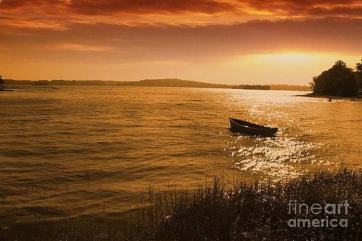 Golden Sunset  by AR Annahita