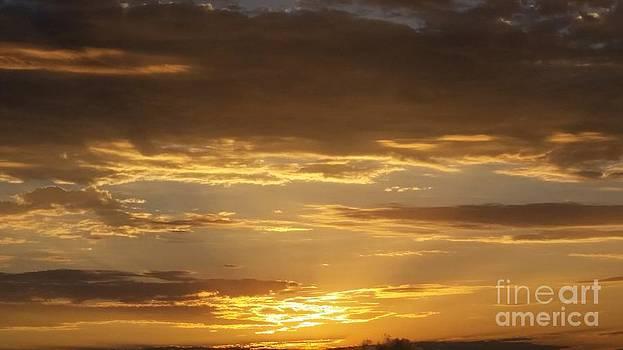 Golden Sunset by Brett Chambers