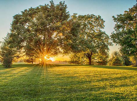 Golden Sunset by Garvin Hunter