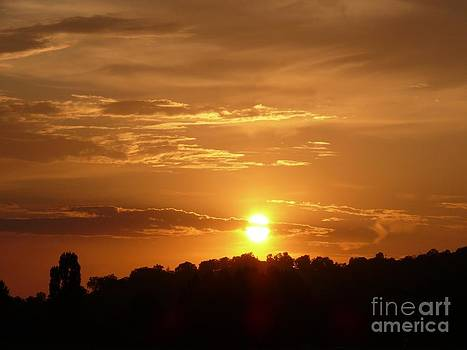 Golden Sunset by Jacquelyn Roberts