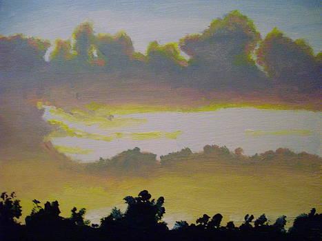 Golden Sunset by Michelle Skinner