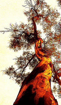 Golden Tree 2 by Jose Espinoza