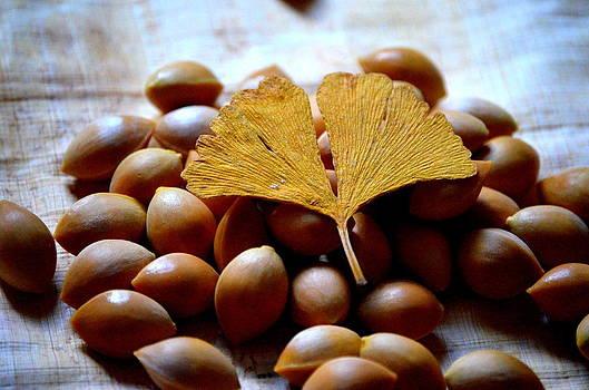 Golden Tree by Riad Belhimer