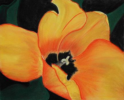 Anastasiya Malakhova - Golden Tulip