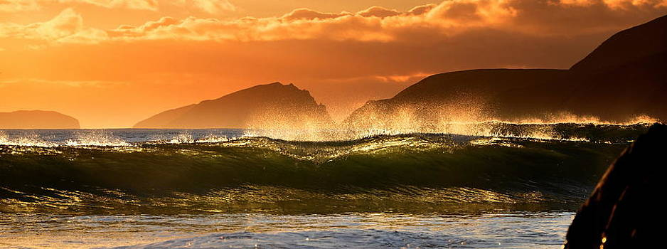 Golden Wave by Florian Walsh