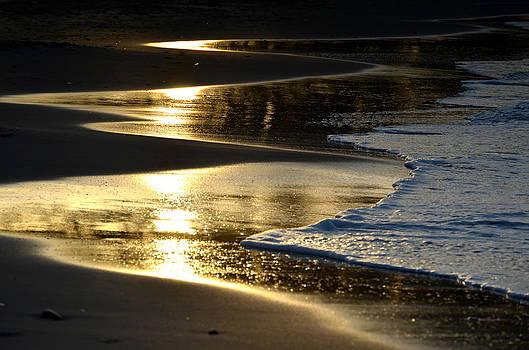 Golden Waves  by Riad Belhimer