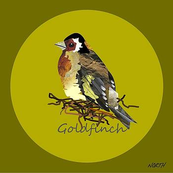 Goldfinch by Kenneth North