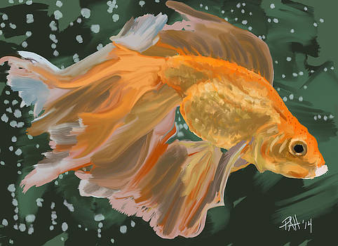 Goldfish by Peggy Hickey